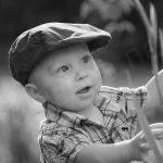 Poika ja heinänkorret
